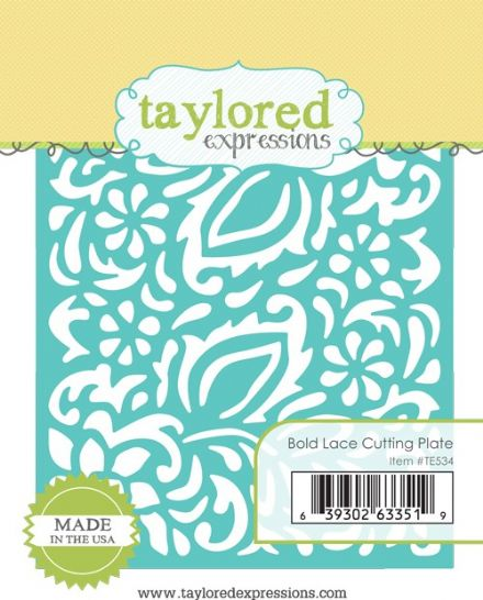 TE534 ~ BOLD LACE CUTTING PLATE ~ dies by Taylored Expressions